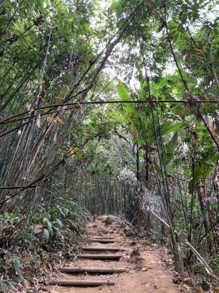 27850D36-9C8E-436C-8961-998EE9FAA632-600x450 チェンライ近郊 クンコンの滝