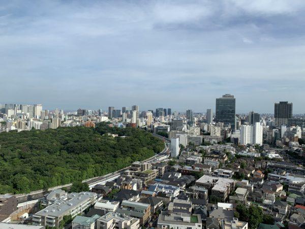 EFF95EAD-F779-463C-9B7A-ABCEEBE4C6EE-600x450 非常事態宣言下のウェスティン東京に泊まる