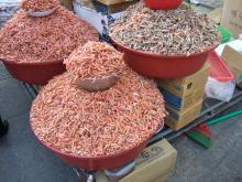 blog_import_54114a825d07d 釜山 チャガルチ市場