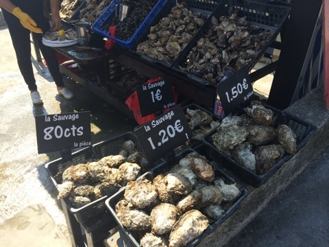 blog_import_541171e5e9cce カンカルの牡蠣屋台でカキを食べる