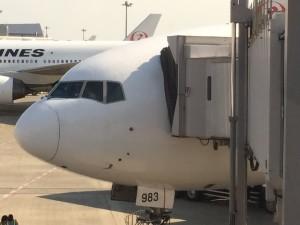 image24-300x225 10月19日JAL508便新千歳発羽田行き普通席